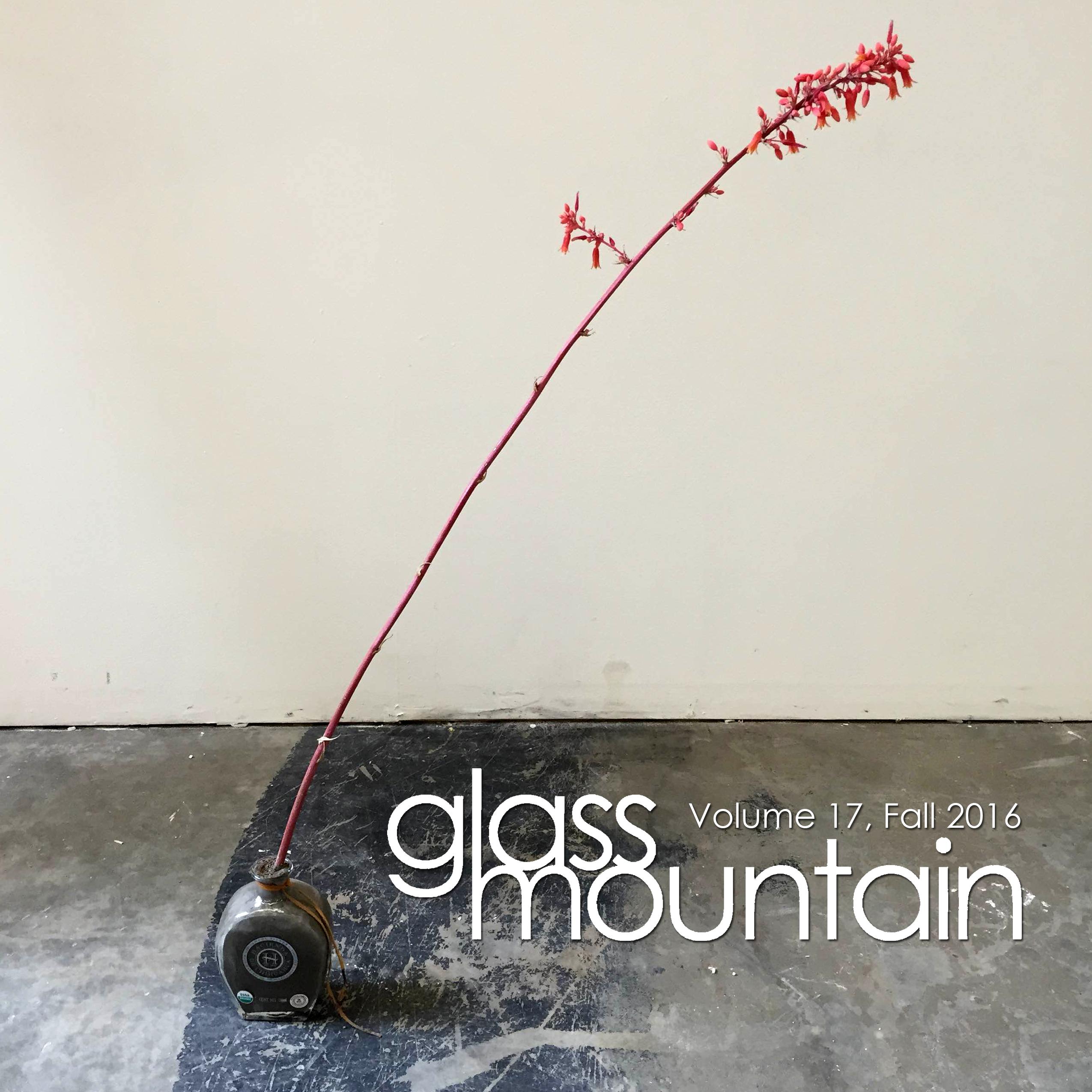 Glass Mountain Magazine | Volume 17, Fall 2016