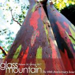 Glass Mountain Magazine | volume 18, Spring 2017
