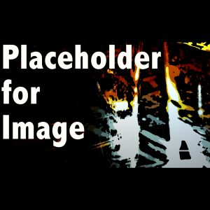 Placeholder - image coming soon